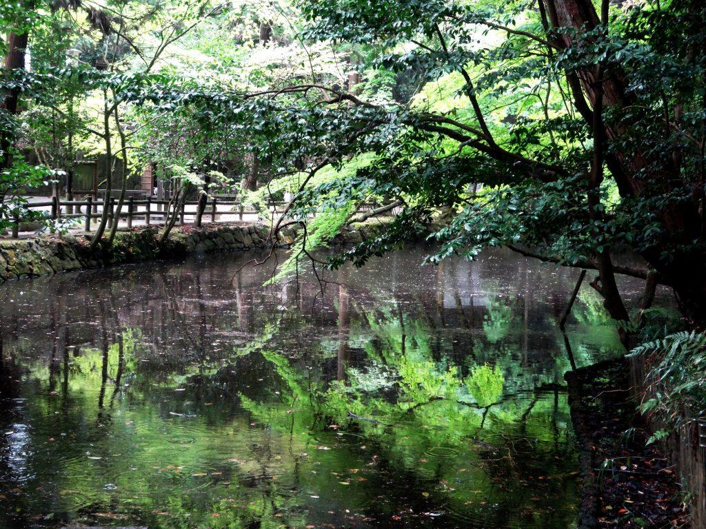 石上神宮、鏡の池