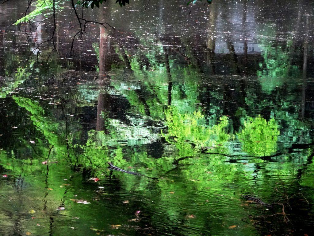 石上神宮 鏡池