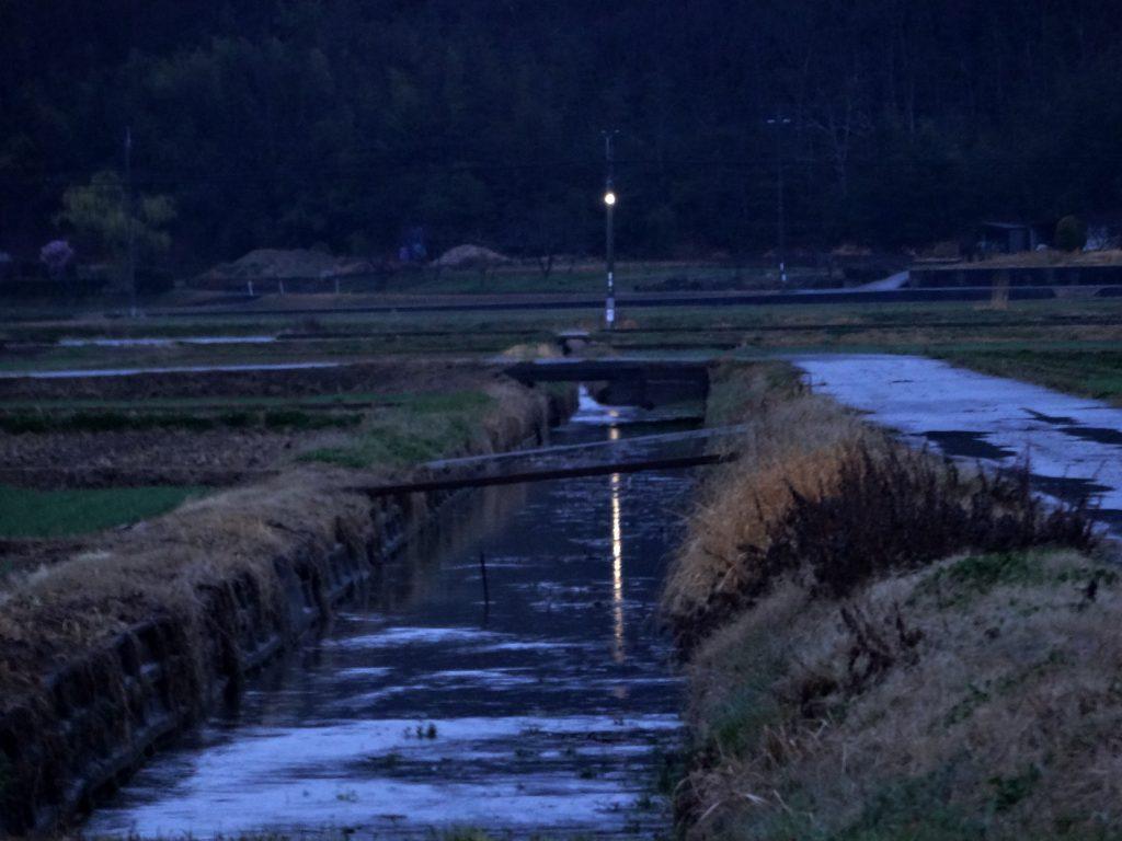 田舎、春の雨の夕景
