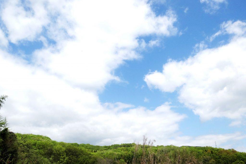 THE田舎の春の空