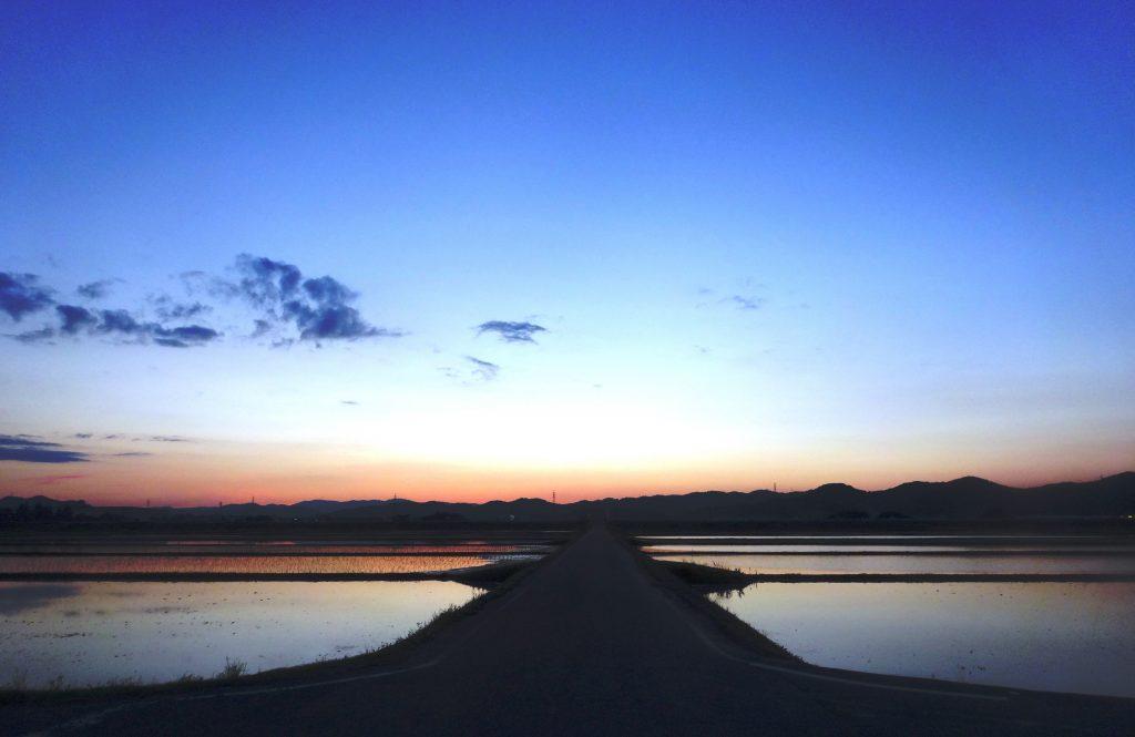 水田の夕焼け