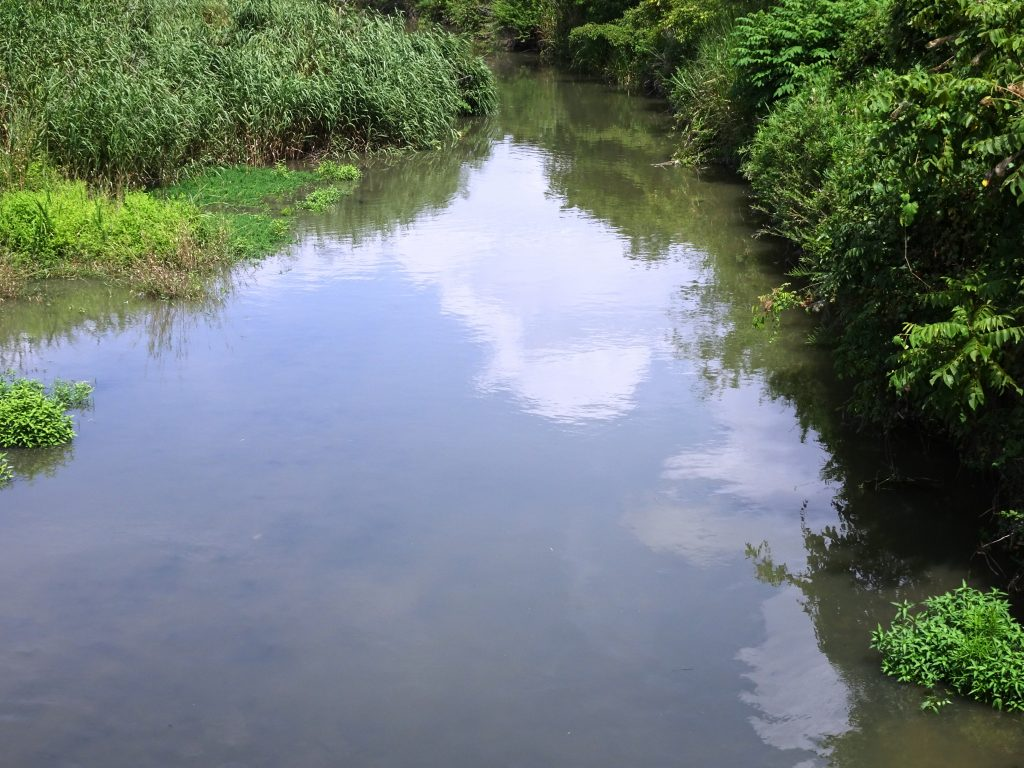 田舎の川、雲を映す