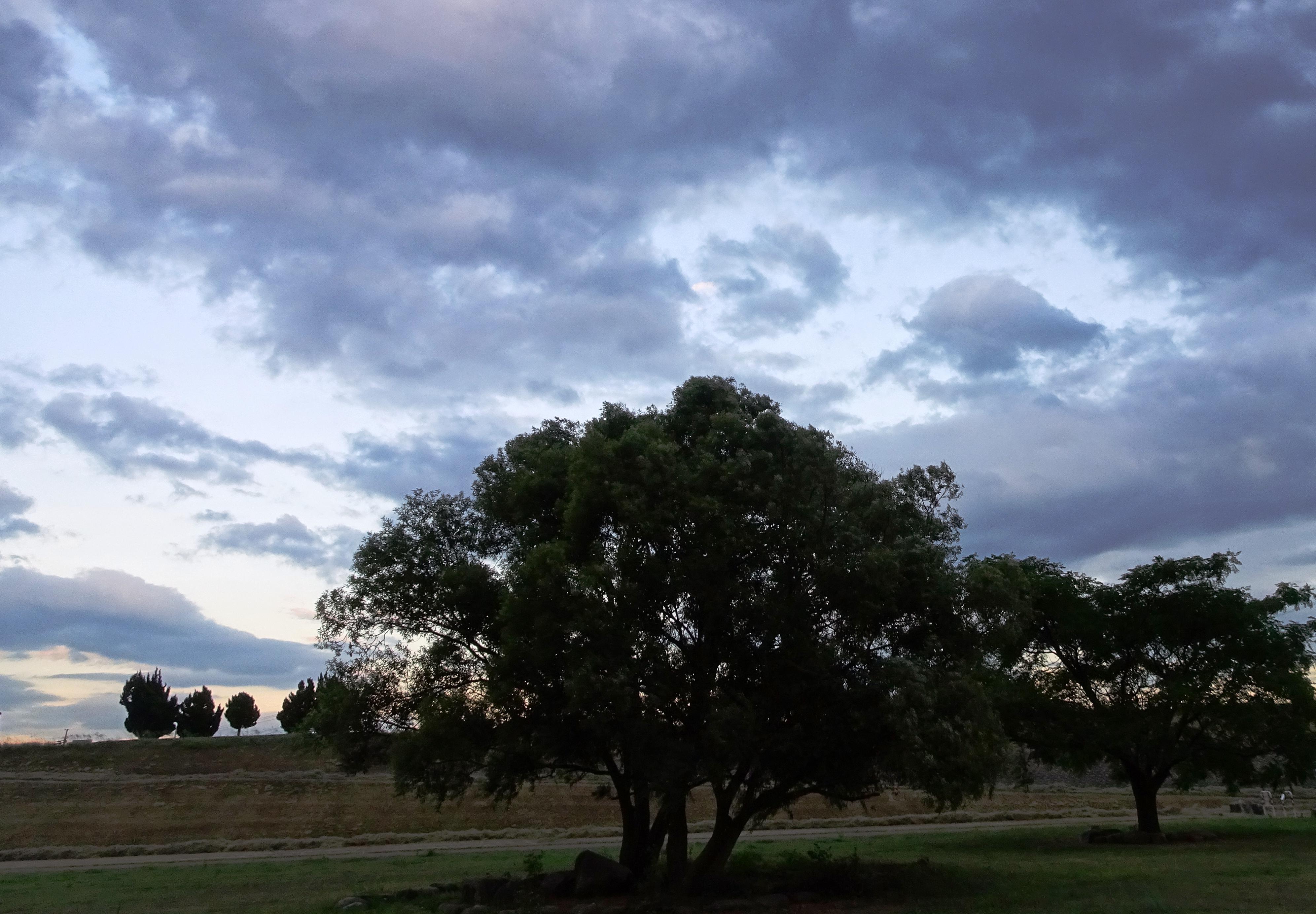 雲の多い夕暮れ川辺の公園