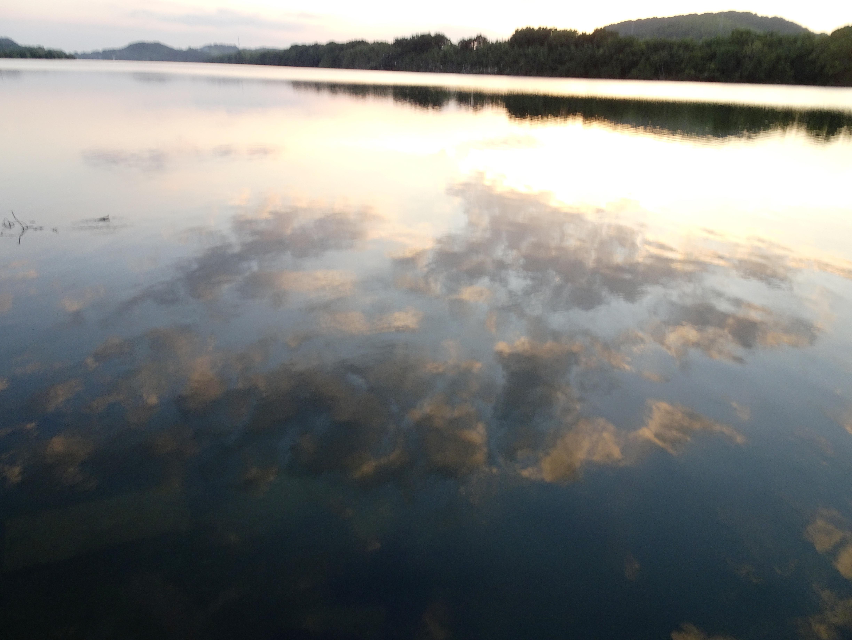 水面に映る夕景