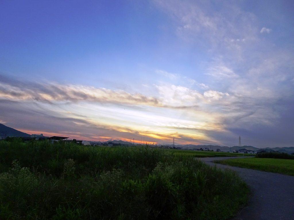 農道 夕景