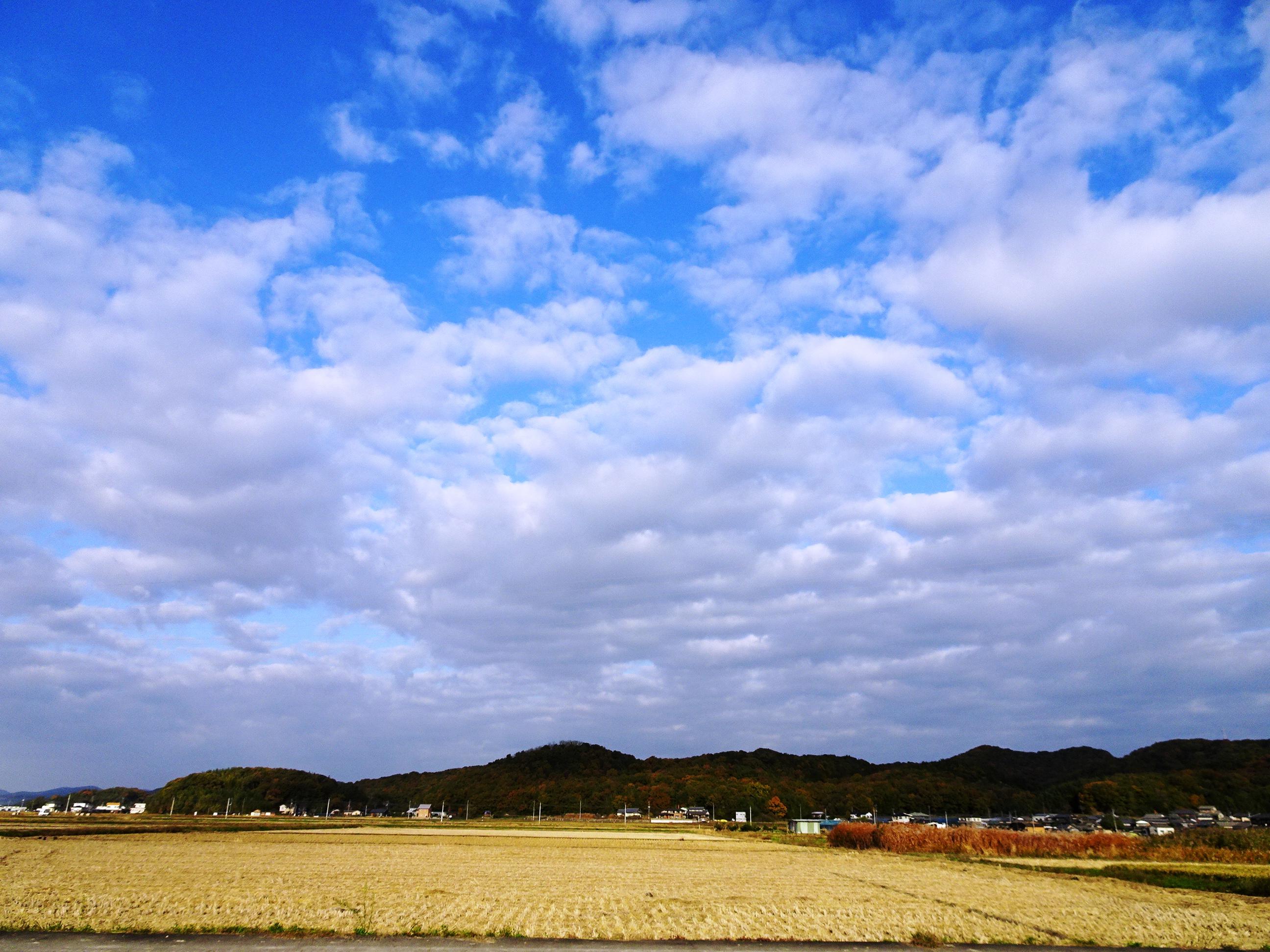 晩秋の田舎