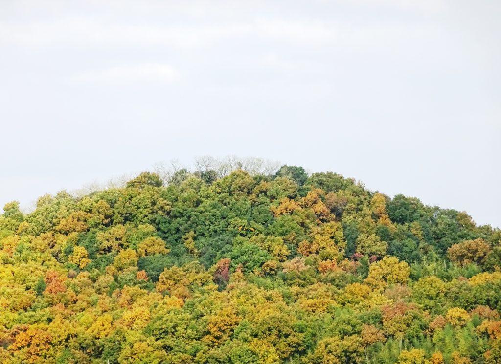 秋の田舎の山
