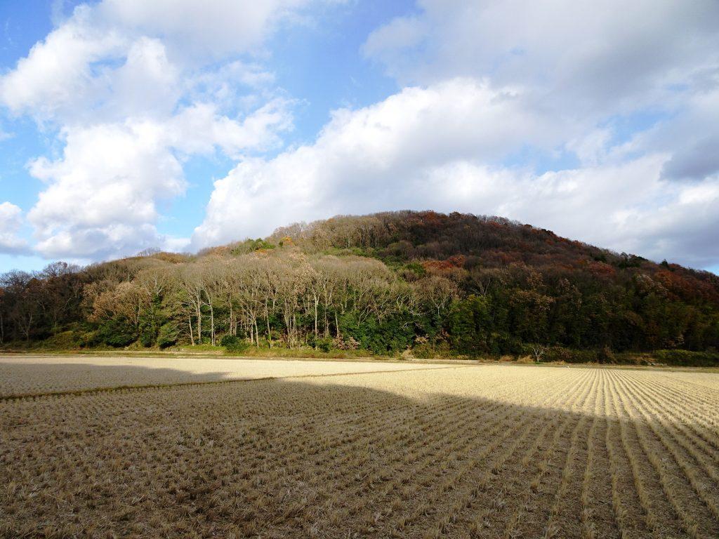 穏やかな日差し 冬の山