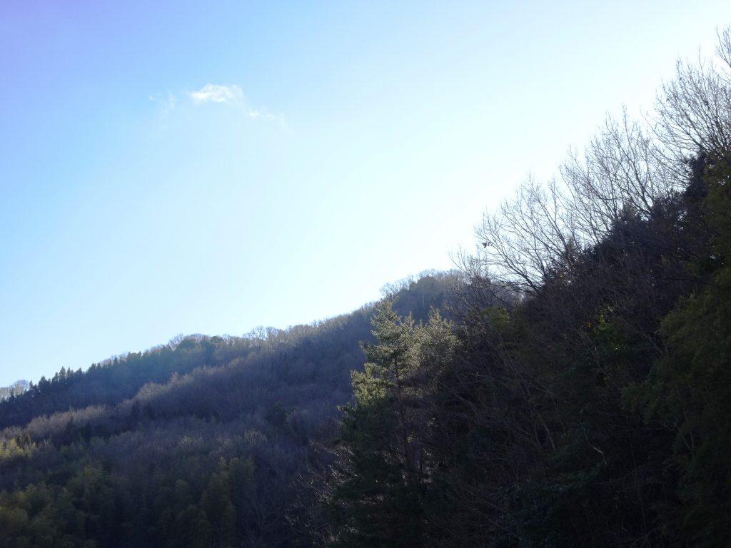 大寒の頃の山