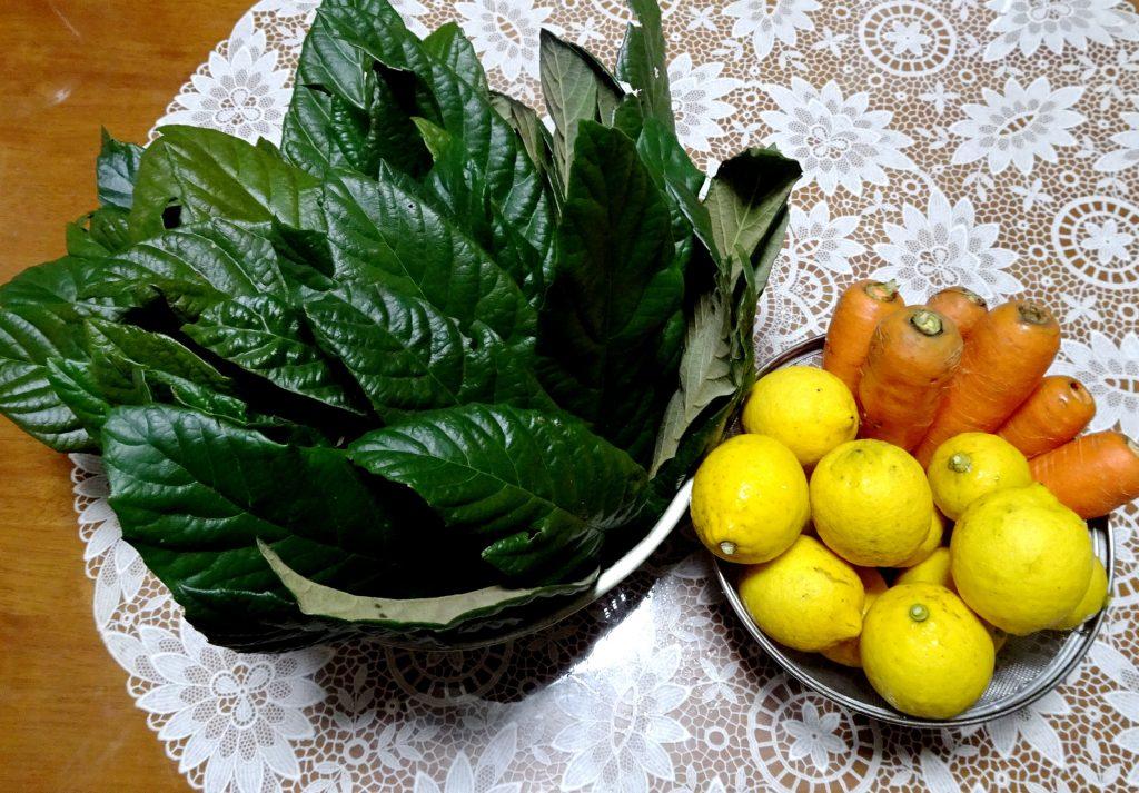 友人宅の枇杷の葉とレモンと我が家のにんじん