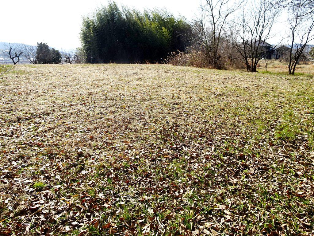 冬は休む畑