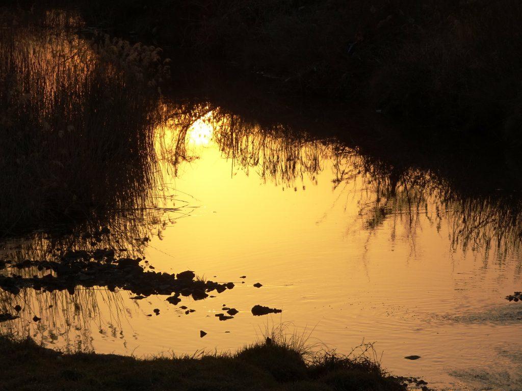 冬の川 夕景