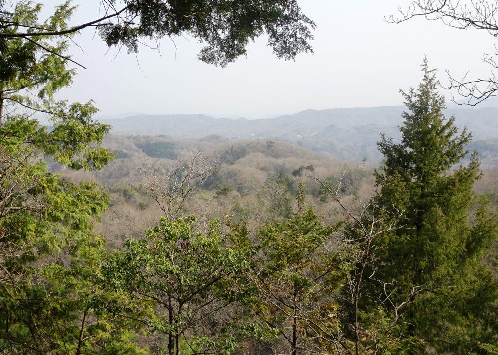 山の上の神社