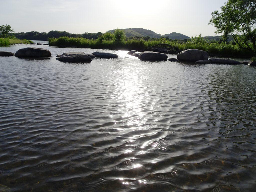 河川敷の午後