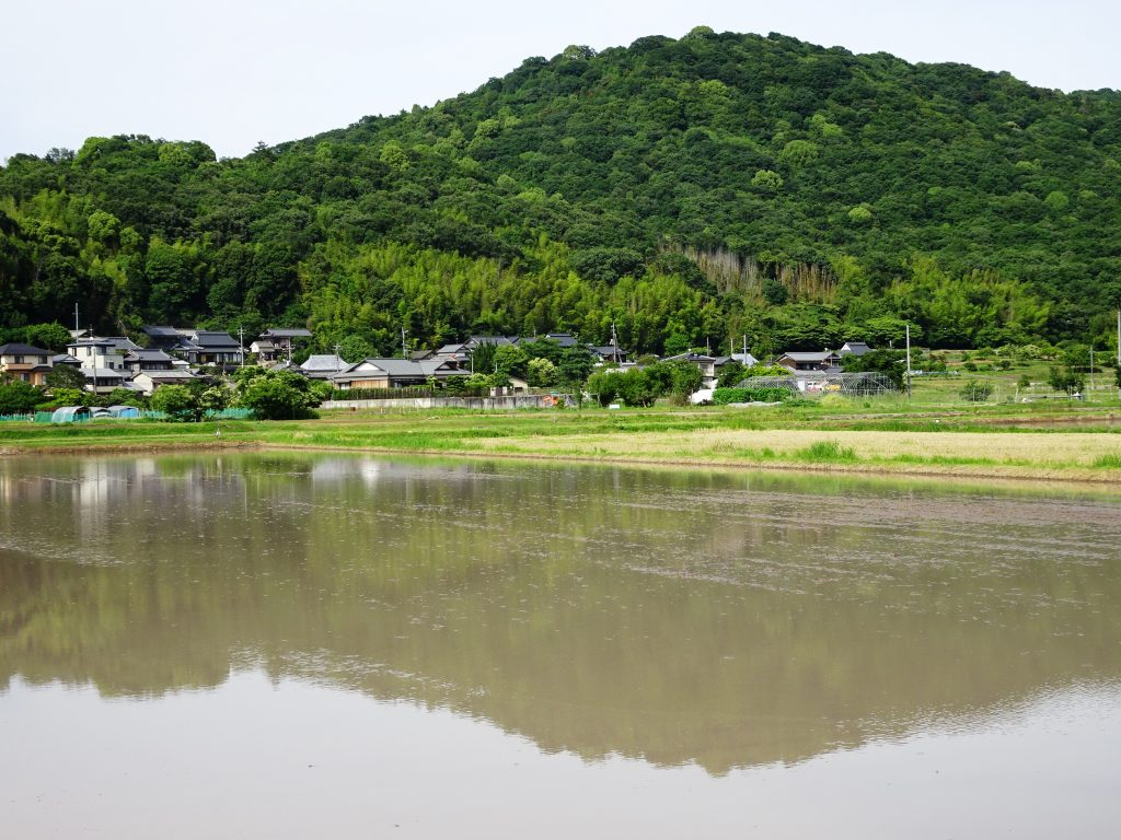 田んぼに映る山