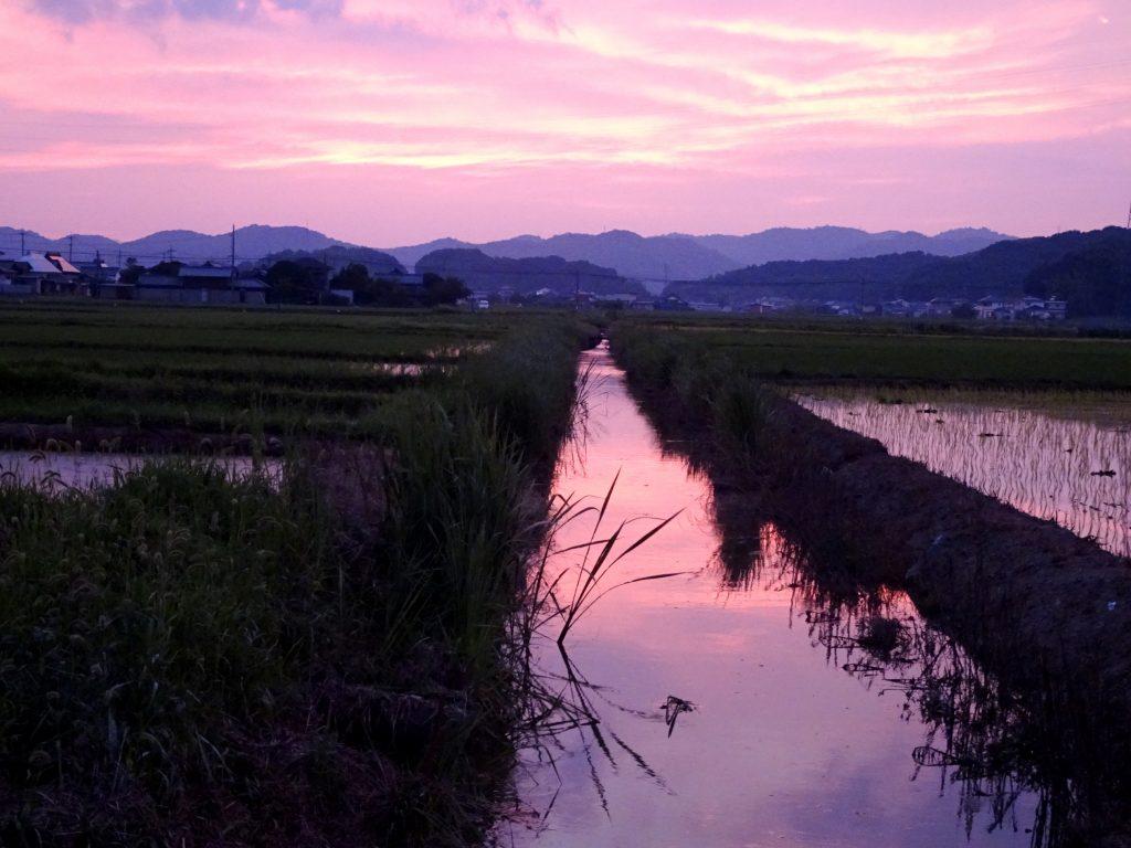 朝顔色の夕景