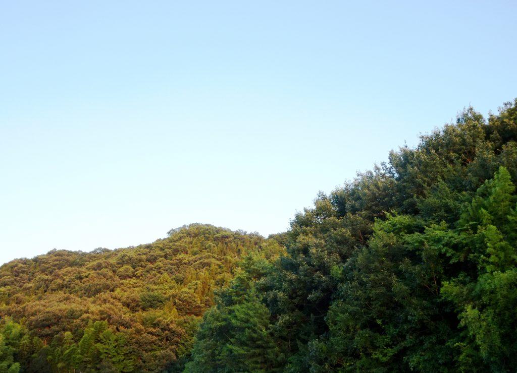 夏の山夕景