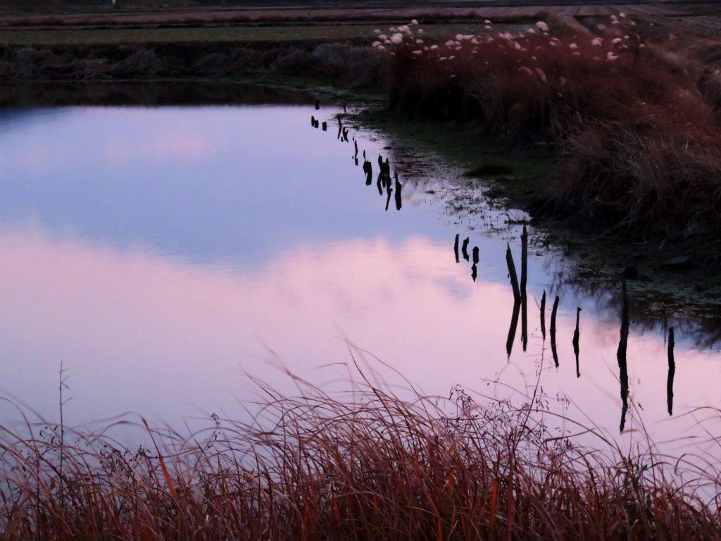 冬の田舎夕景