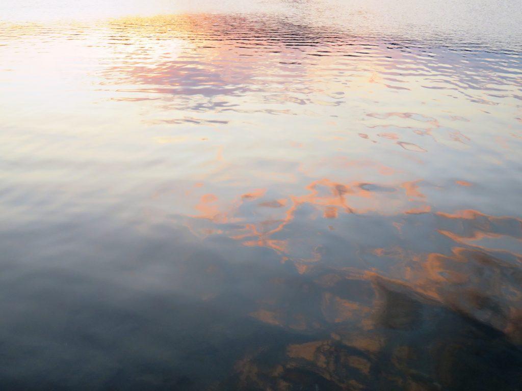 秋の川辺 夕景