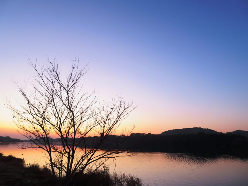 冬、河川敷夕景、水面