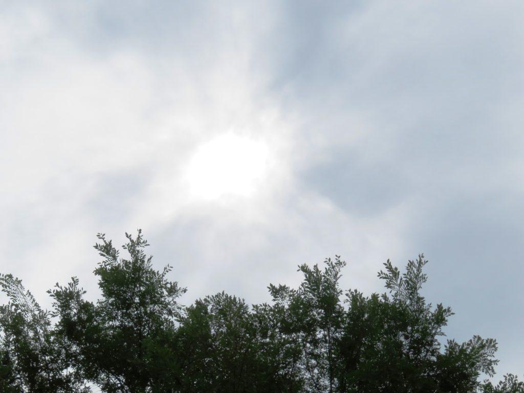 薄曇りの梅雨空