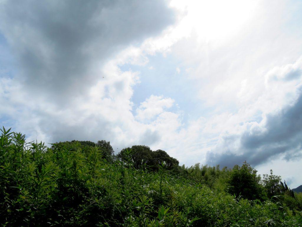 雲間から青空