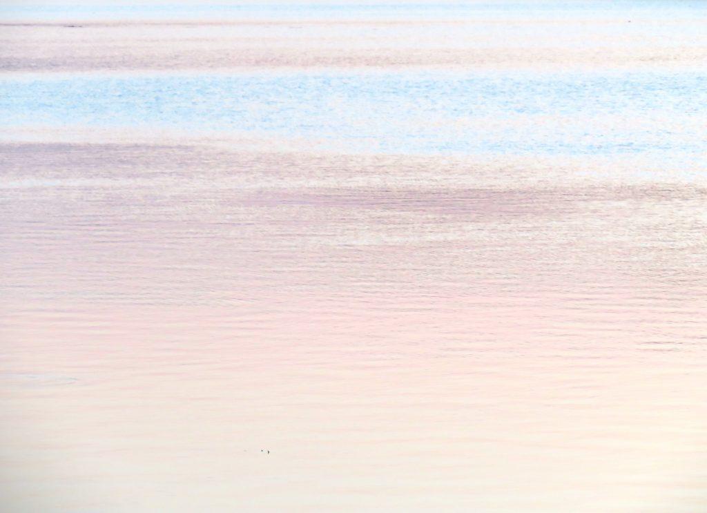 夏の水辺 夕景