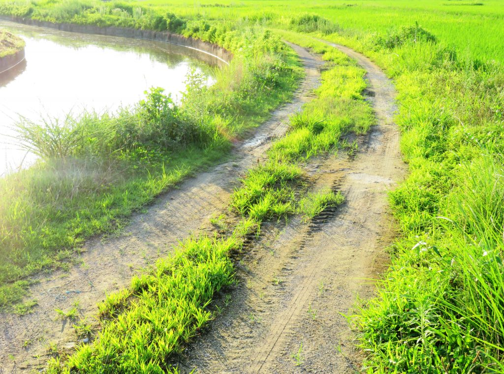 夏の田舎道 夕景