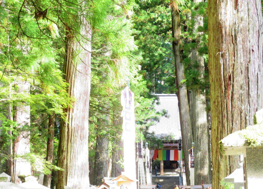 高野山 奥の院参道