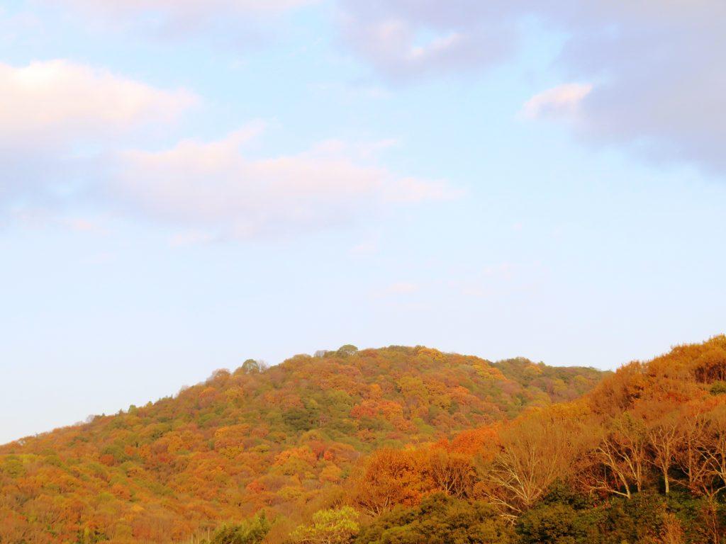 夕陽に染まる山