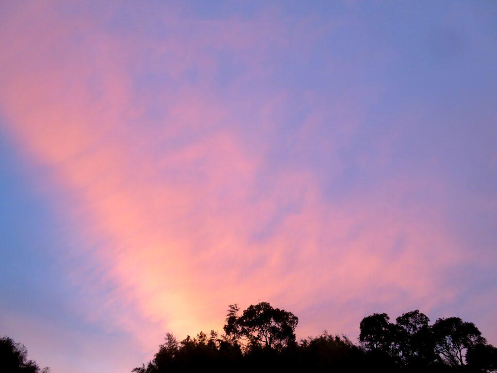 ピンク色の夕焼け